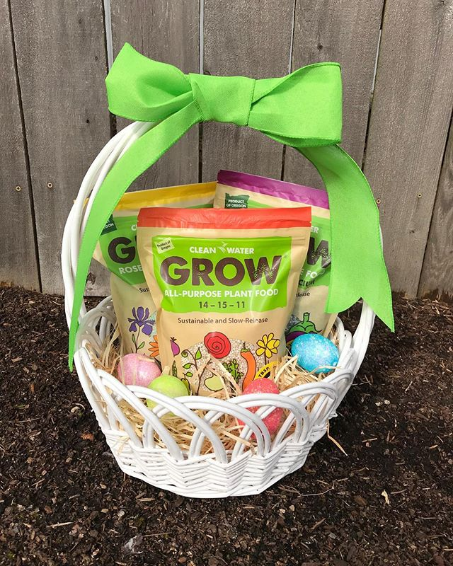 Happy Easter! 🐰What did you get in your Easter basket?