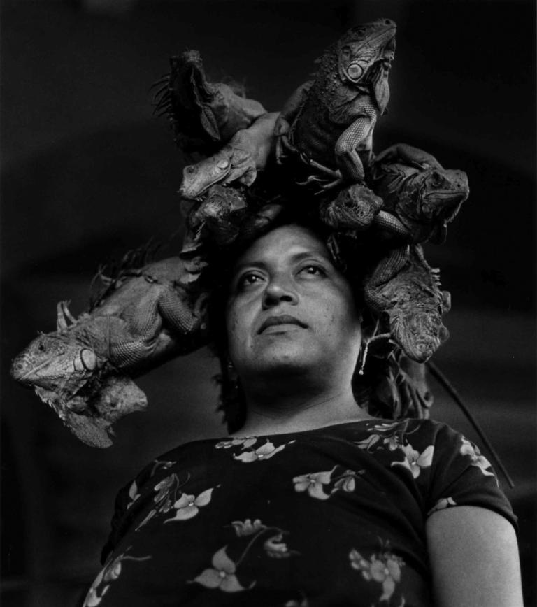 Graciela Iturbide. Our Lady of the Iguanas, 1979.