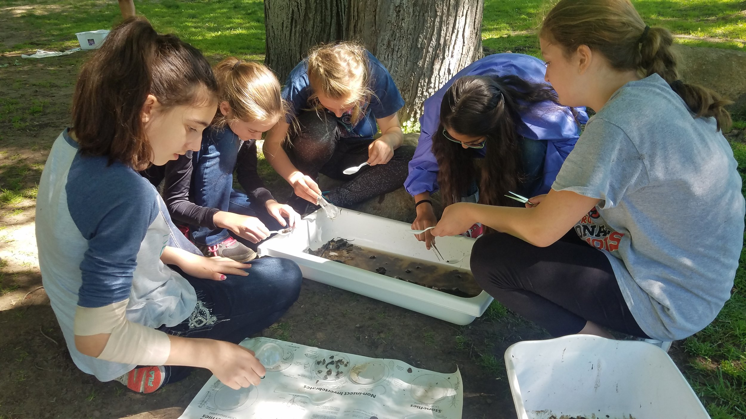 East Rockford Middle School Students Macro Invertebrate Study Rogue River