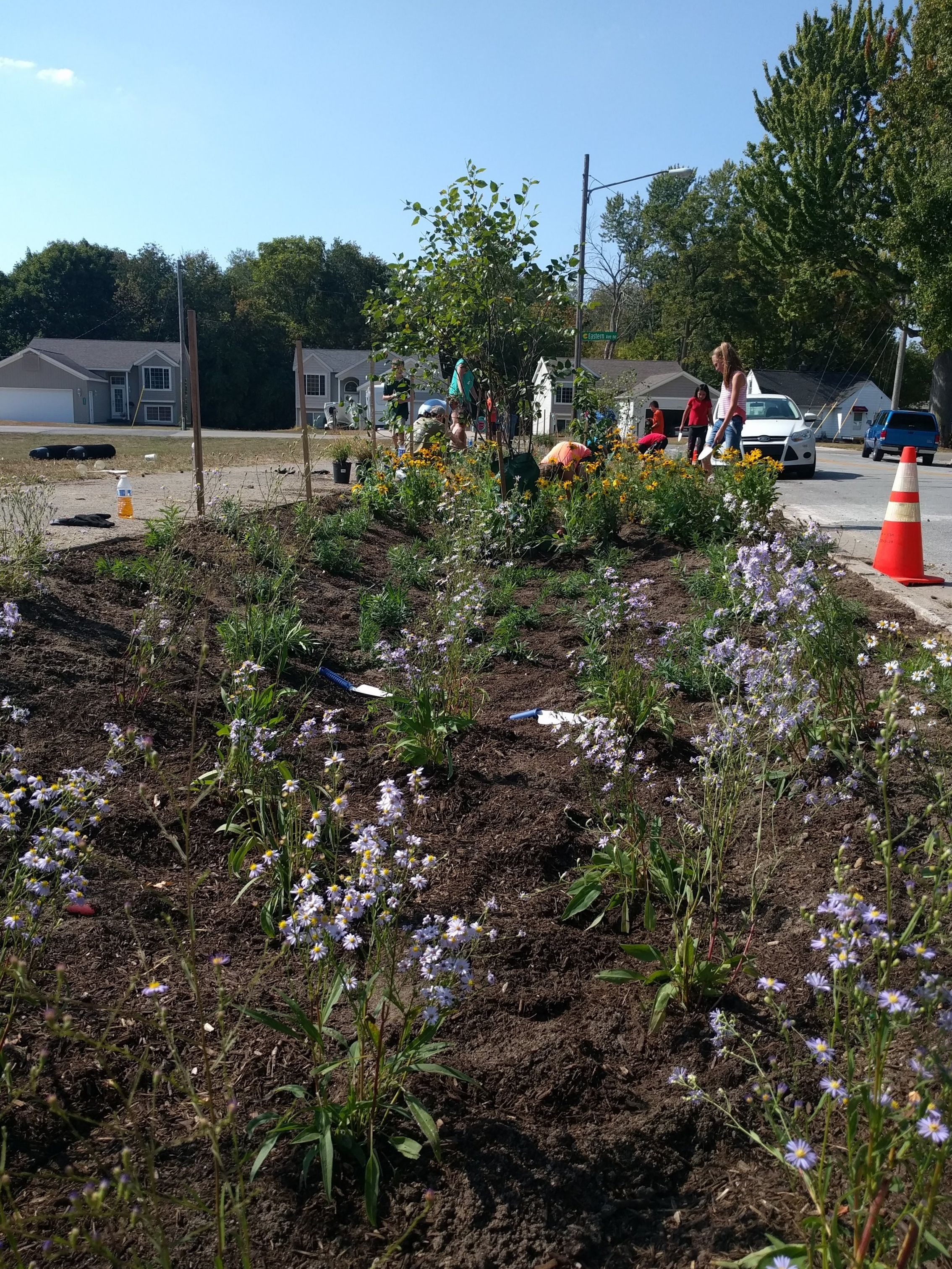 North Park Montessori Bioswale Planting
