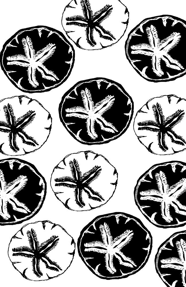Black Sand dollar pattern web.jpg