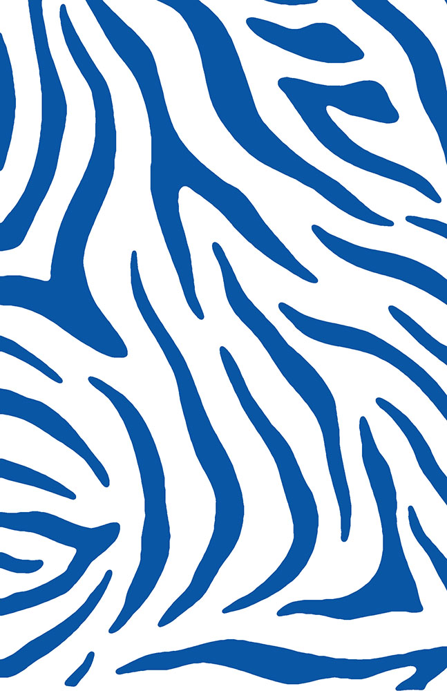Zebra+Stripes+blue+web.jpg