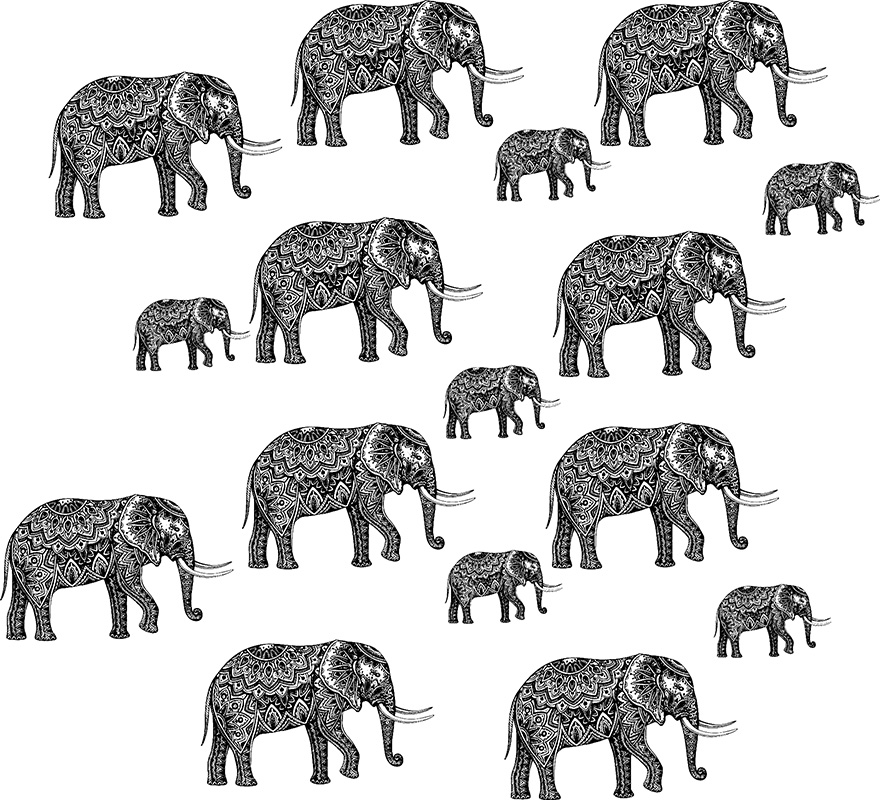 Elephant family pattern web.jpg