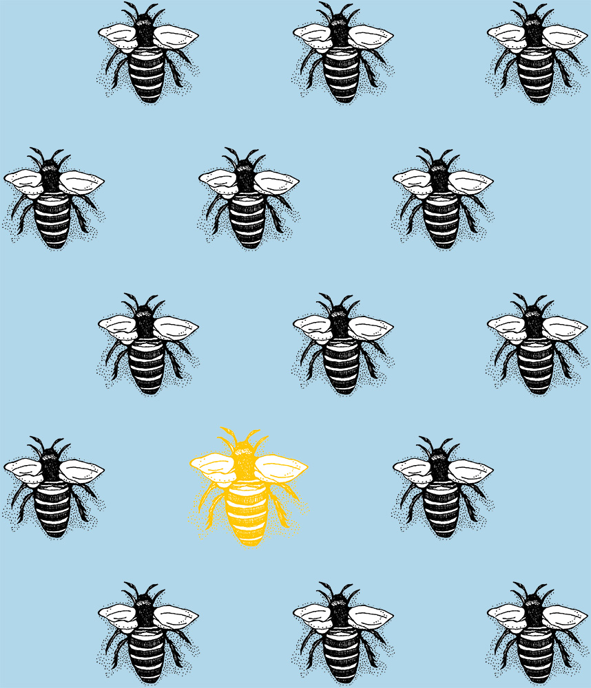 Queen Bee baby blue BG pattern web.jpg