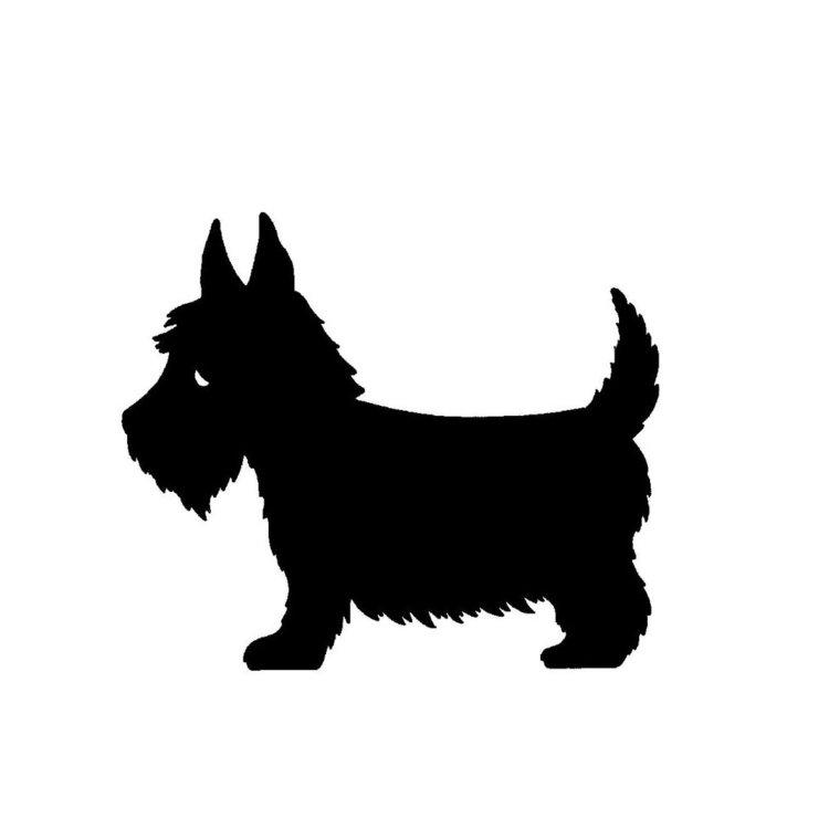 Scotty+dog+web.jpg