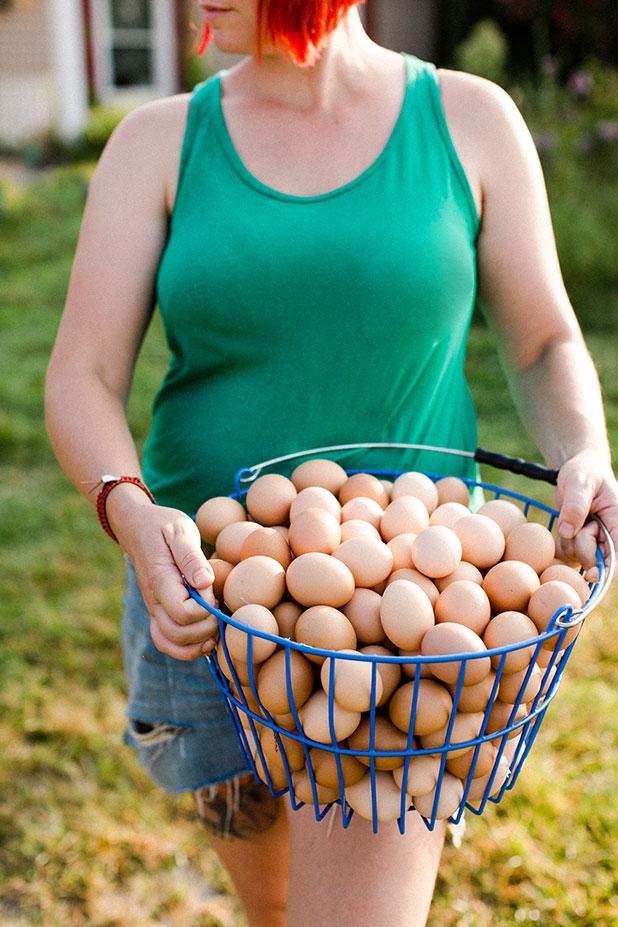 Local free range organic eggs - Sarah Der