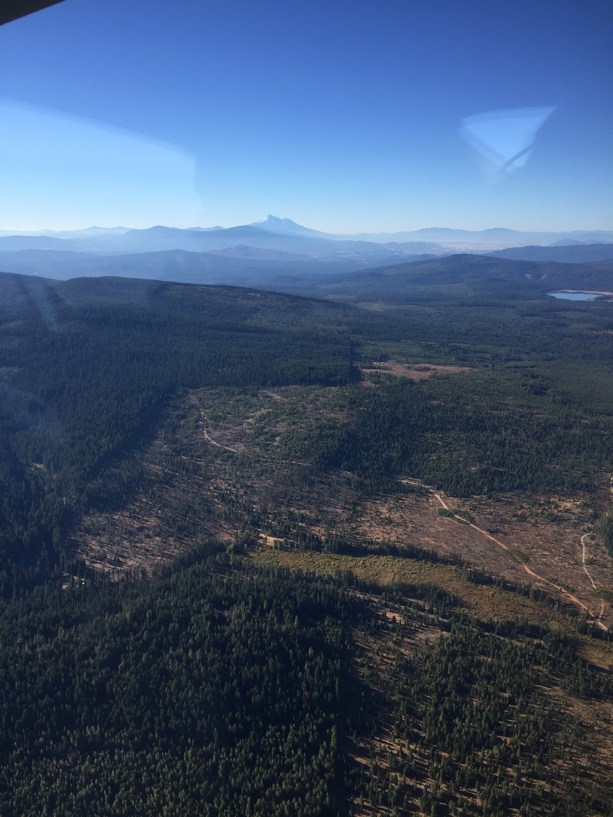A clear view of the boundary between the Rogue River-Siskiyou National Forest to the left and private lands to the right.