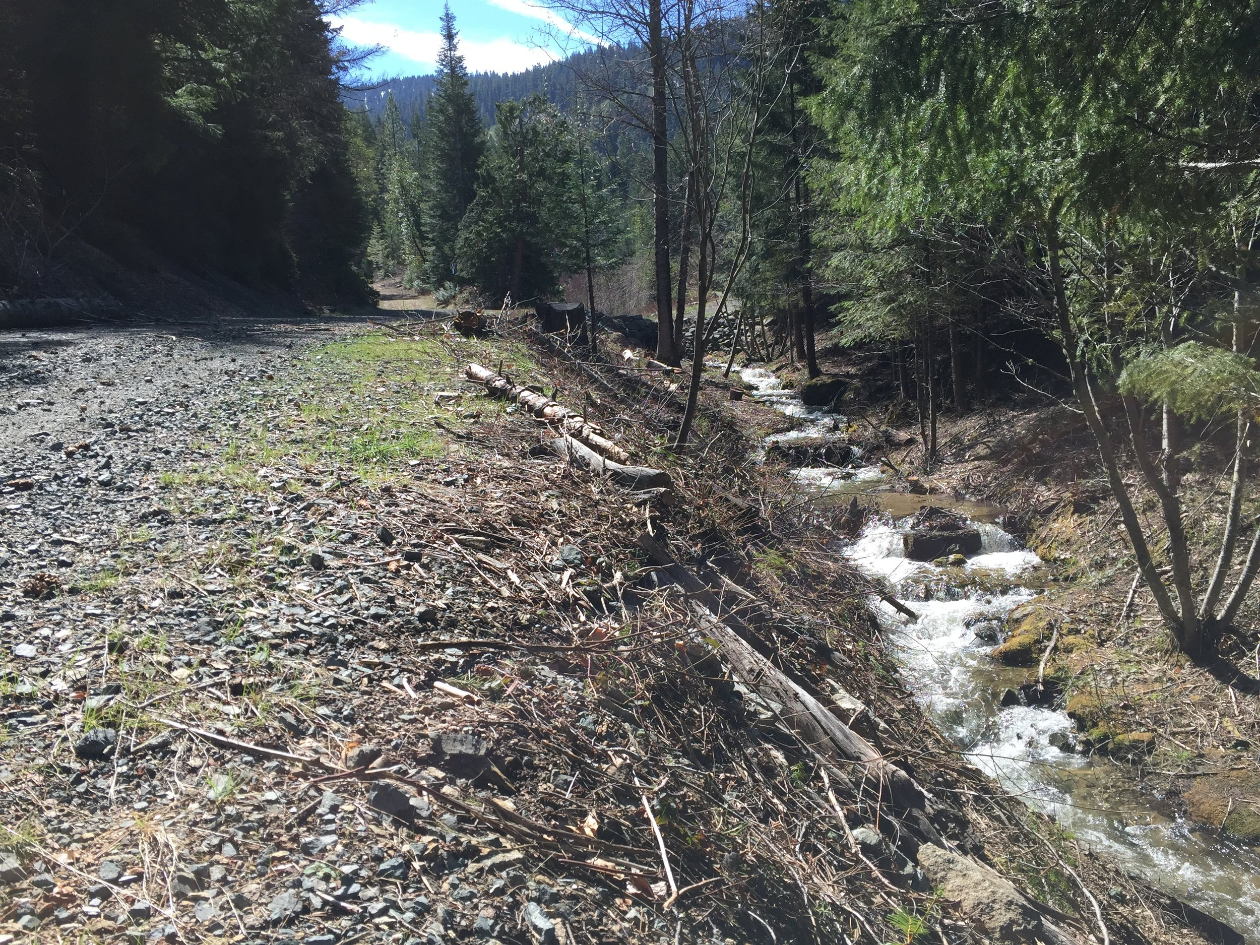 Logging practices along McDonald Creek near Wagner Butte.