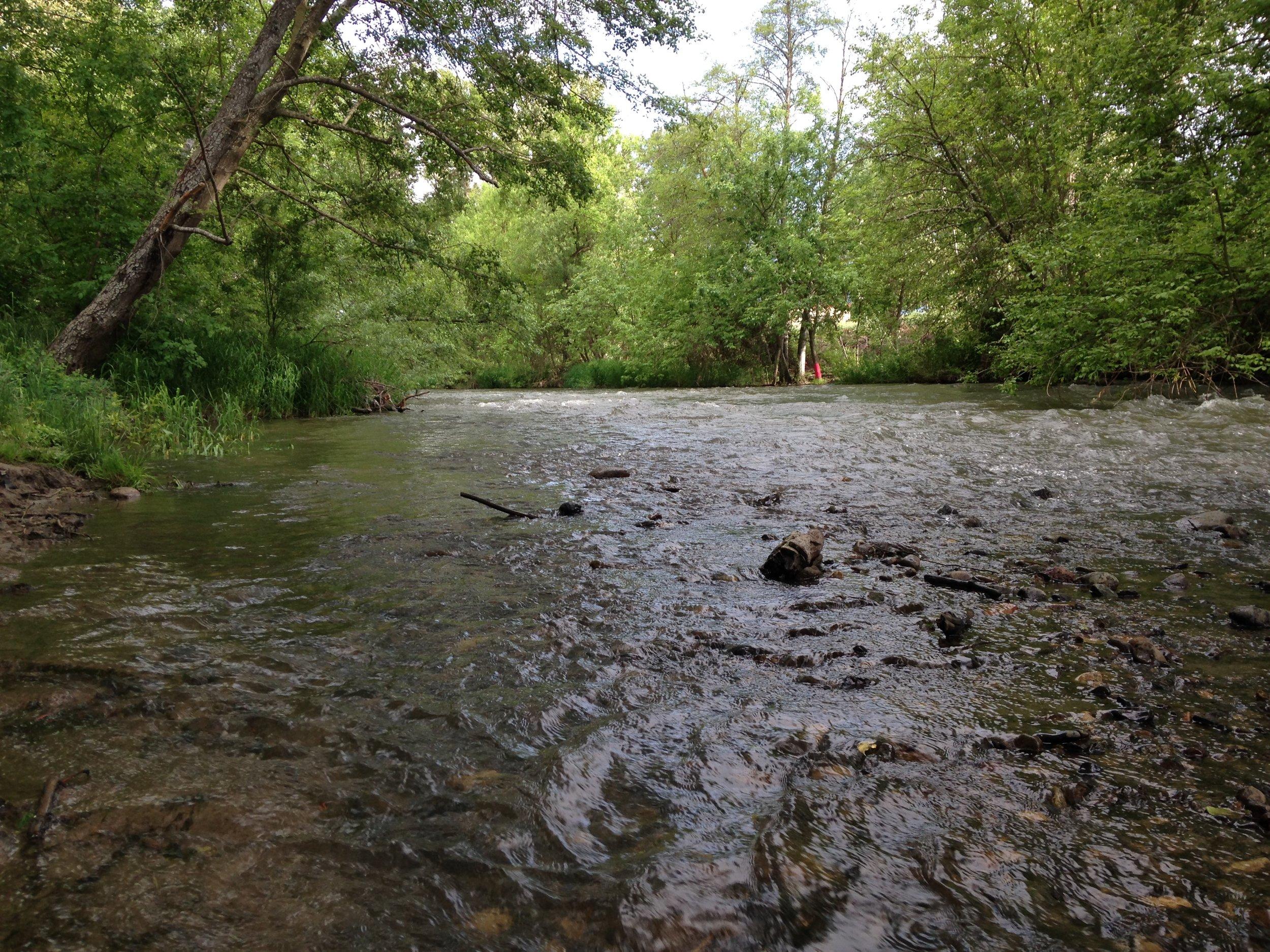 Bear Creek, Upton Rd. Bridge, Central Point