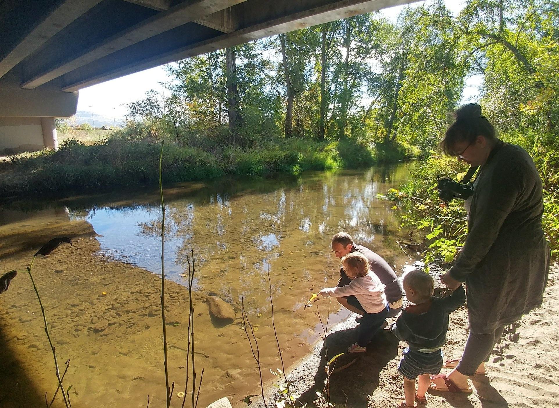 Salmon Strolls in October