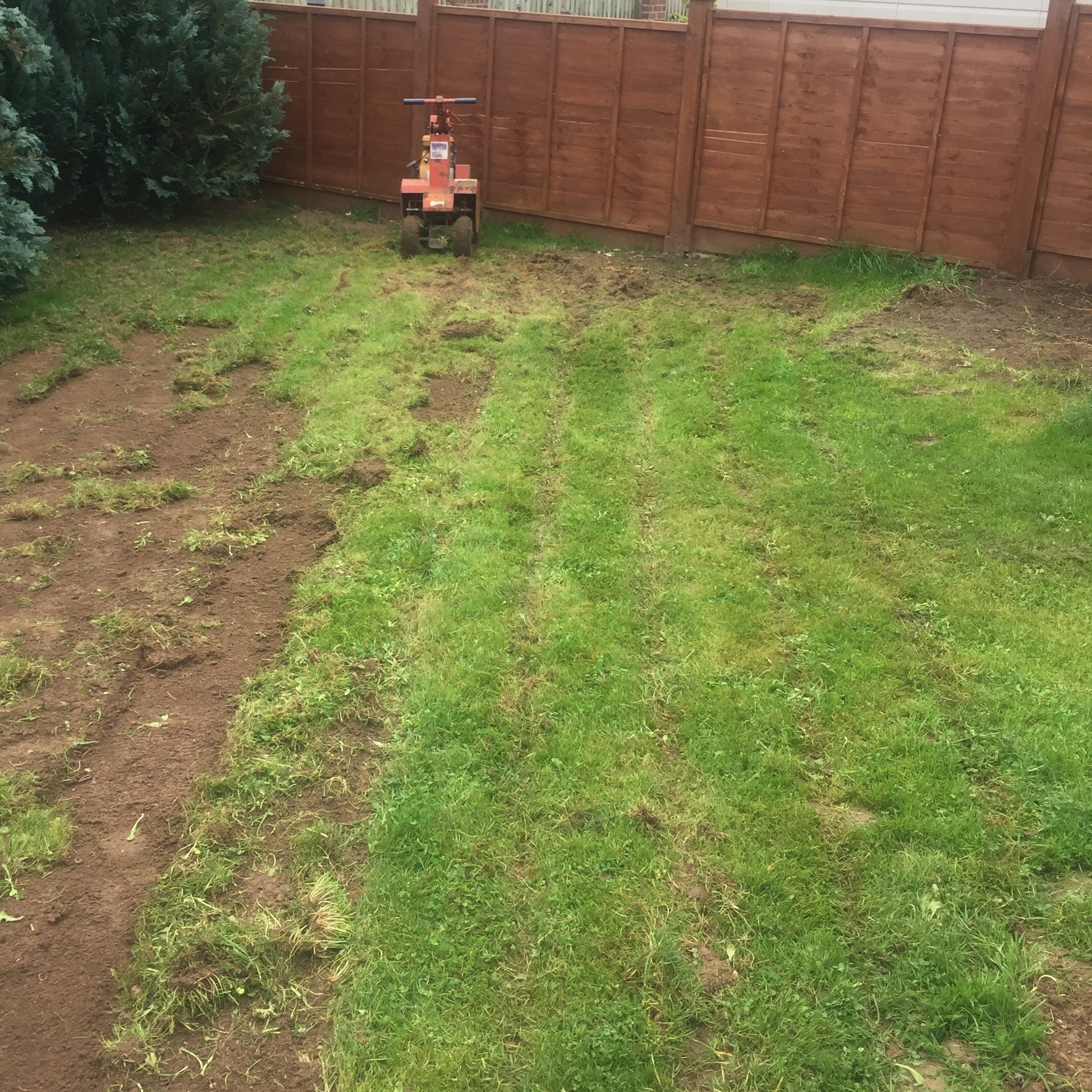 Having lifted the old lawn....