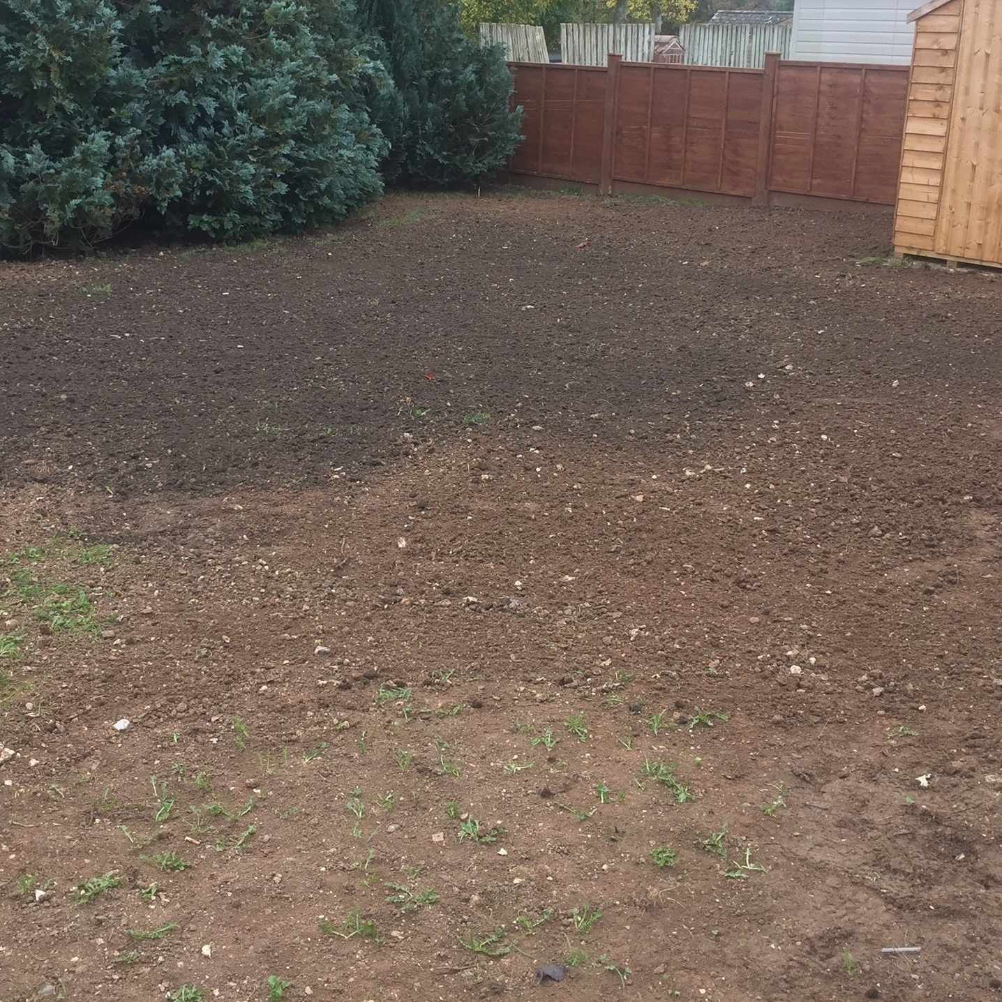 We add and level new soil...