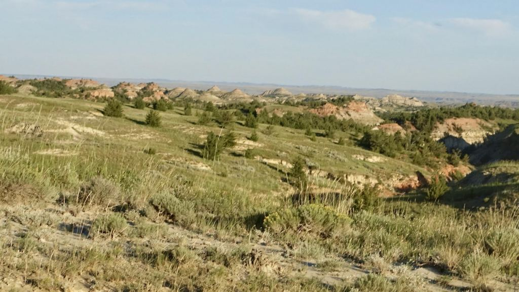 Many of the Badlands along here have pinkish hue.