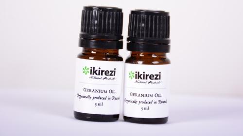 Bottled rose geranium oil for sale