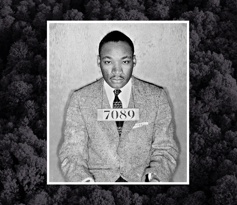 dr king forest.001.png