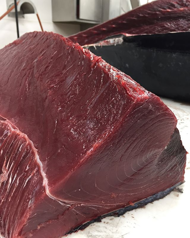Bluefin Tunaformly portioned for our select speciality customers... The tunaverse is truly an incredible place! 🐟😋