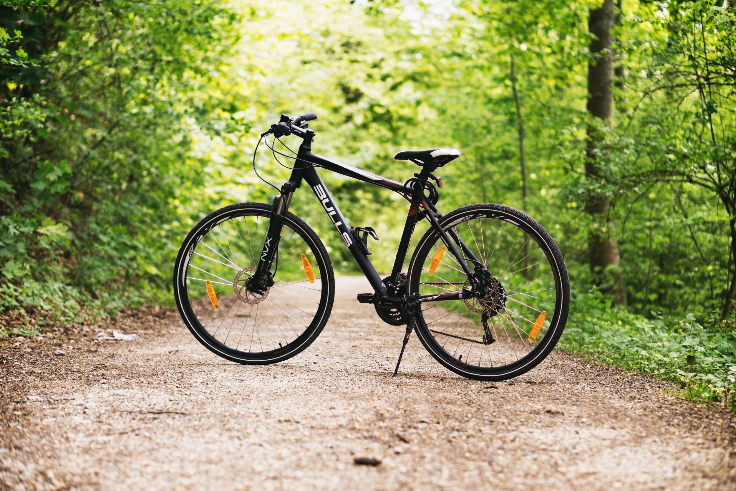 bicycle-bike-daylight-100582.jpg