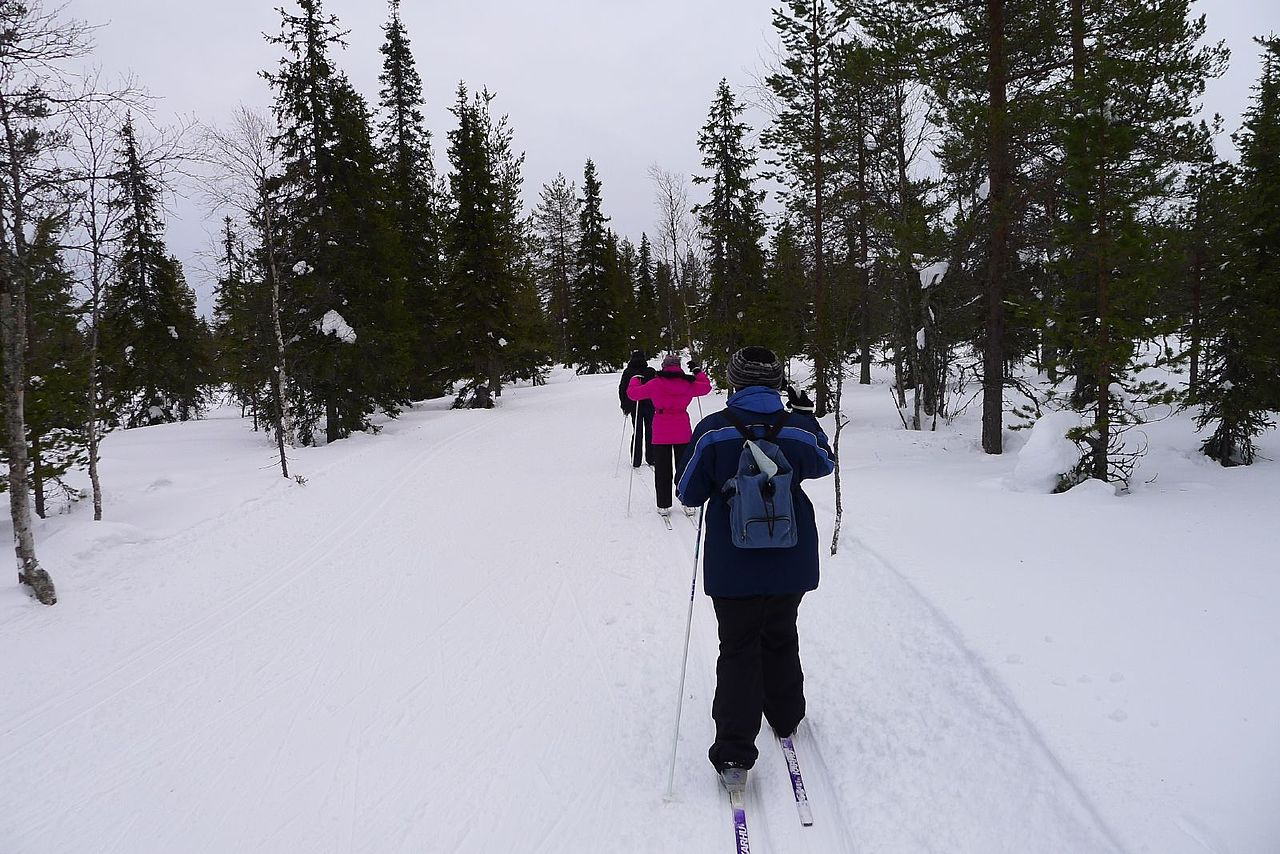 1280px-Cross_Country_Skiing_(6827042104).jpg