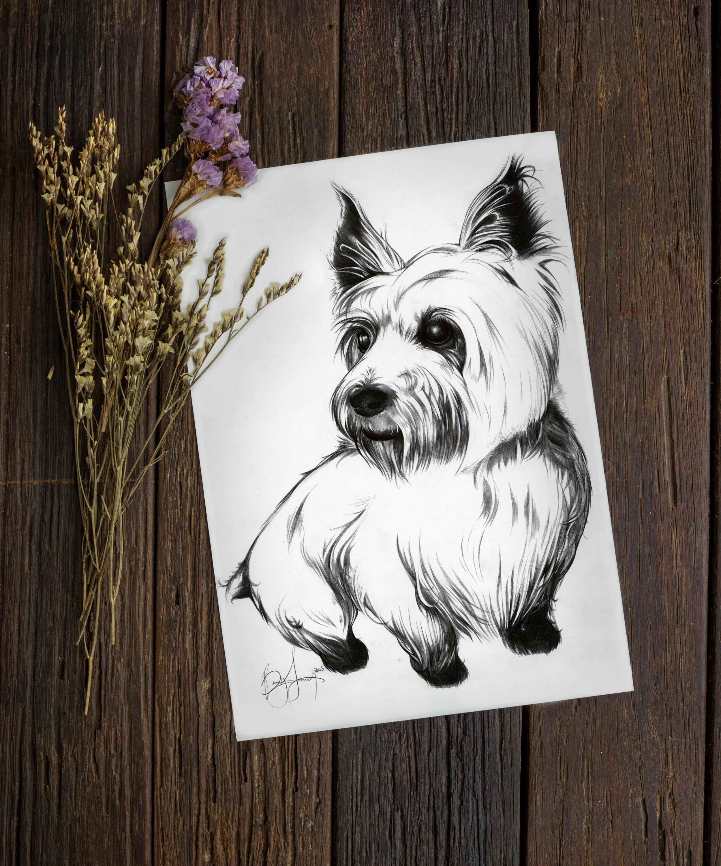 Puppy Portrait 2.jpg