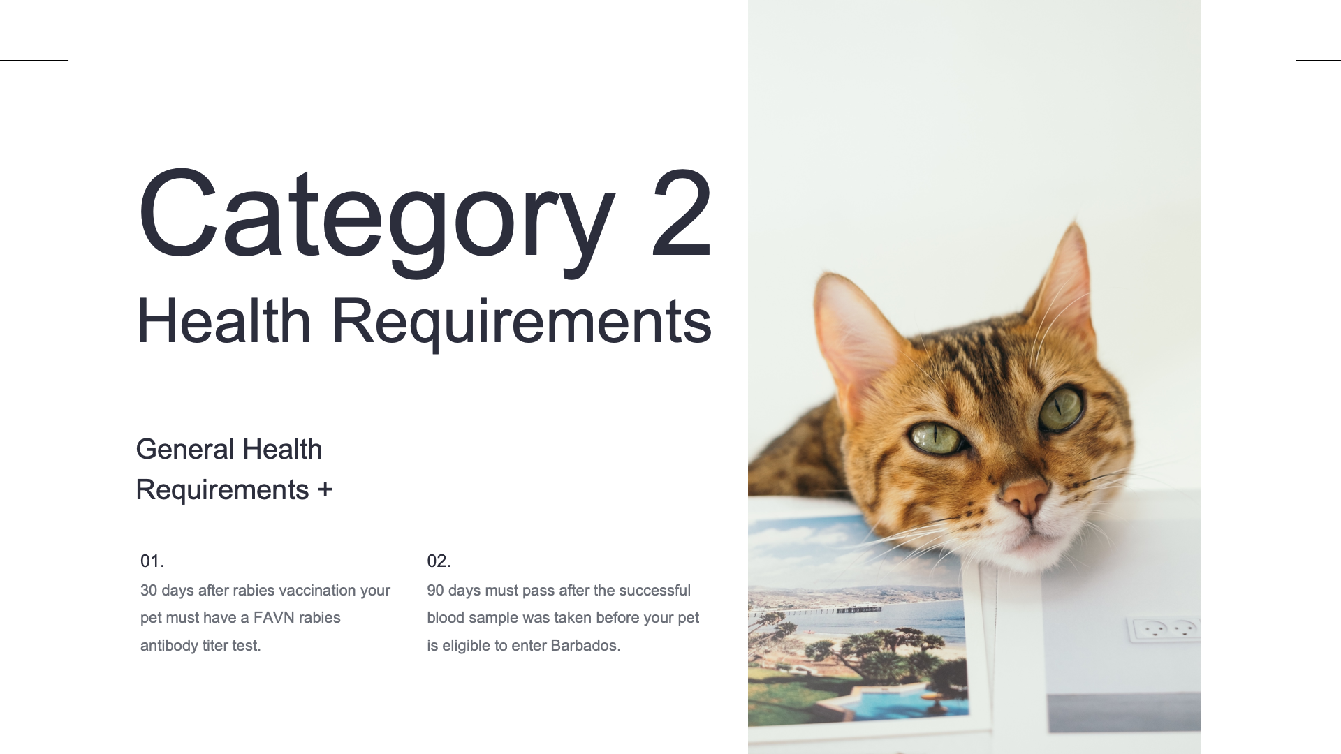 Category 2 Health Requirements