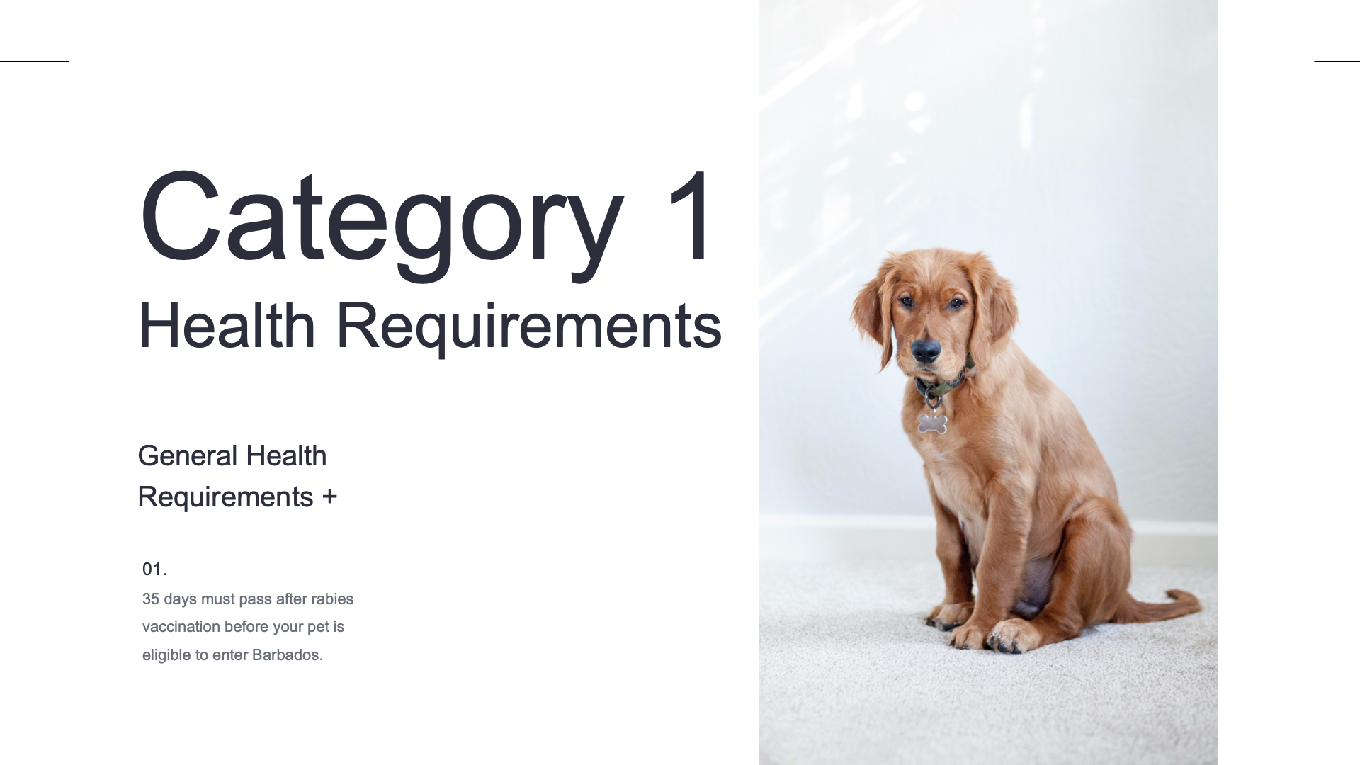 Category 1 Health Requirements
