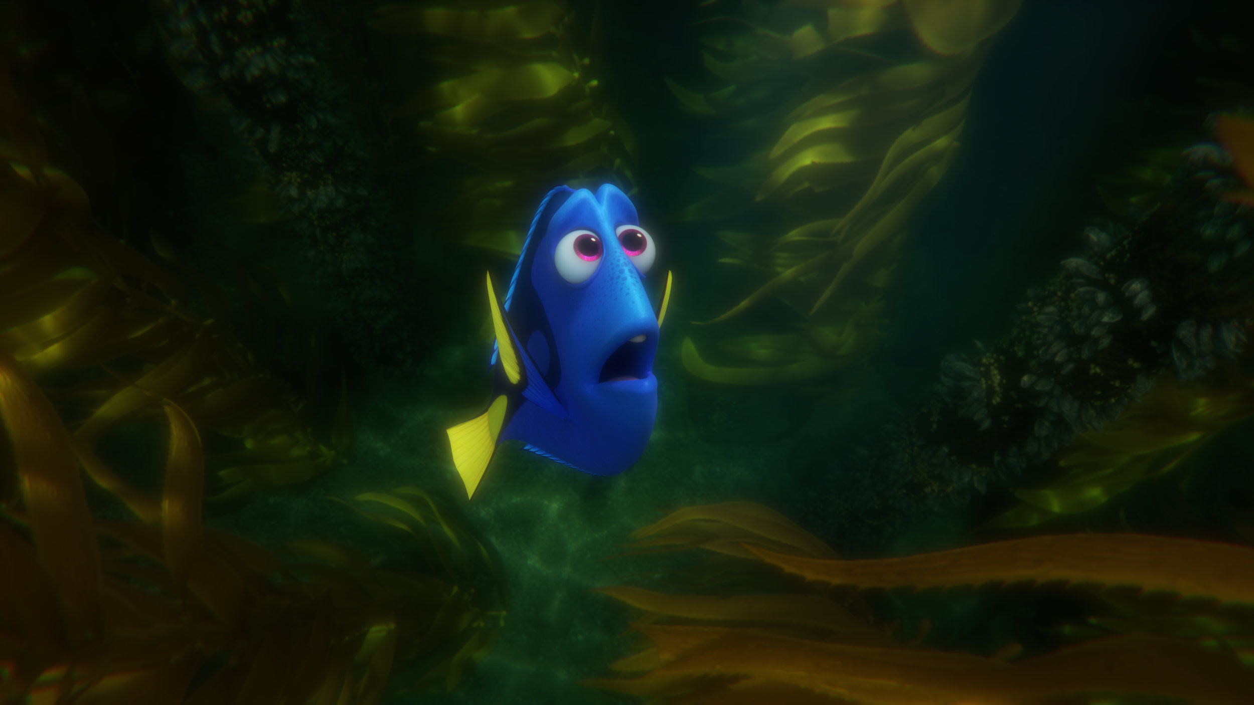 findingdory575a3fb286bf7.jpg