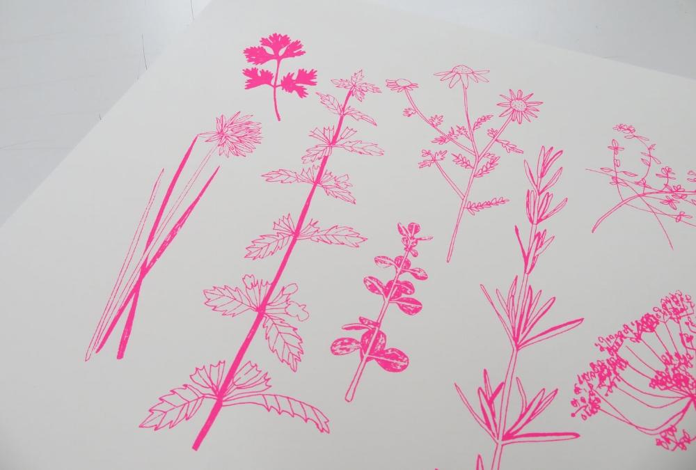 Pink+Herbs+screenprint.jpg