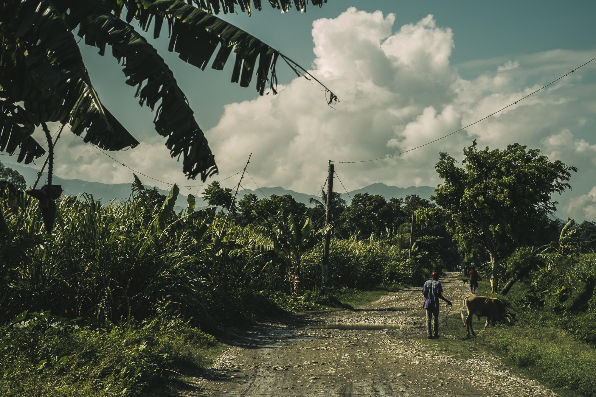 Haiti-2431.jpg
