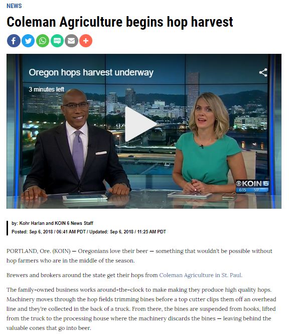 Last Years Koin Article.PNG