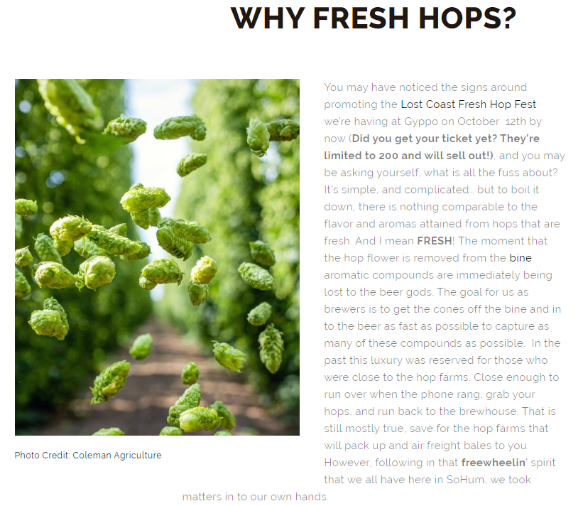 Gyppo why fresh hops.PNG