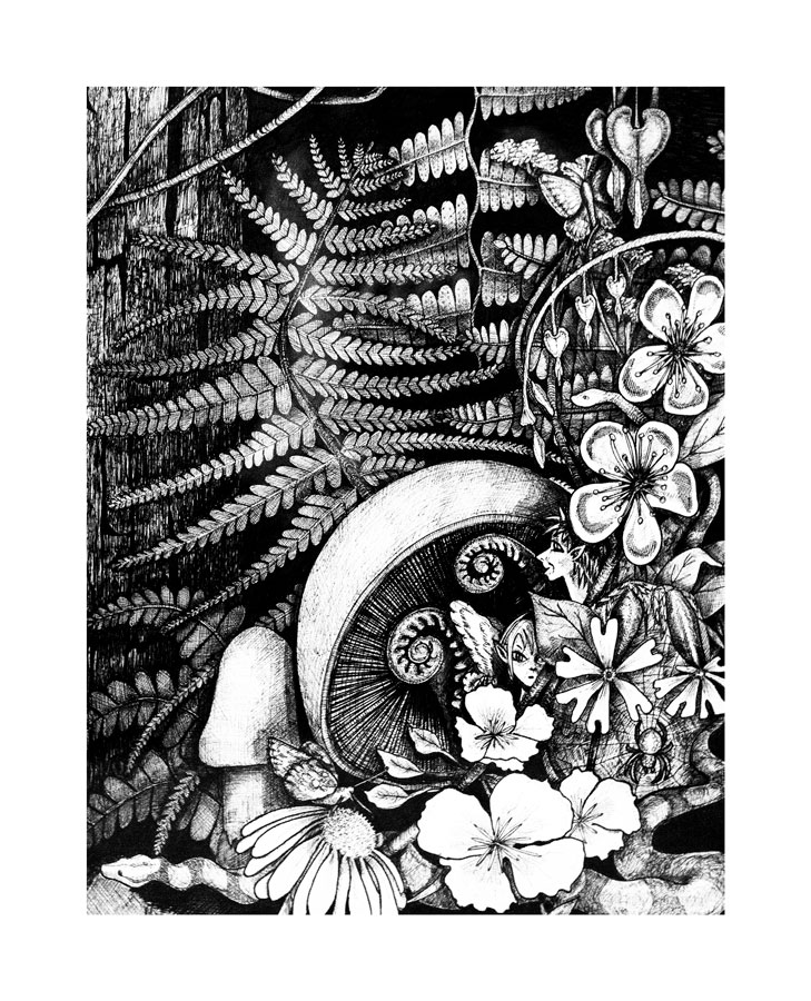 Redwood Dreams in India Ink, 2010
