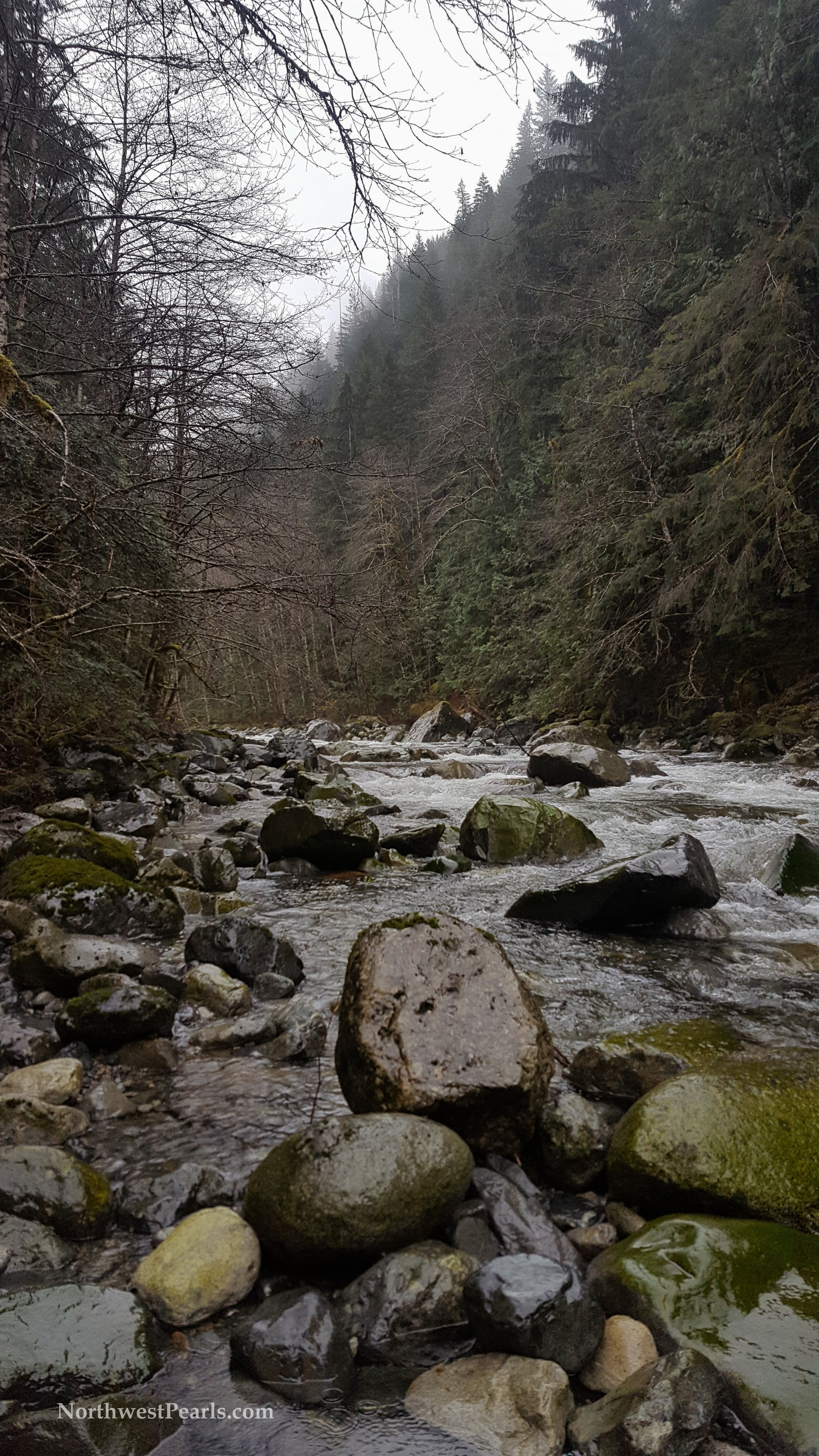otter-falls-blog-7.jpg