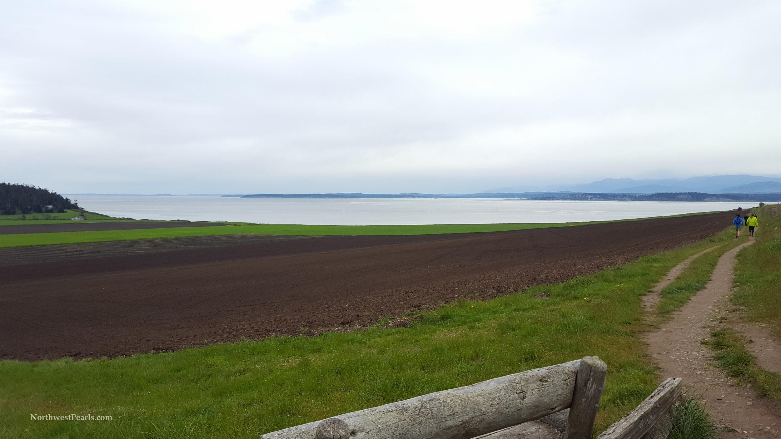 Northwest Pearls: Ebey's Landing