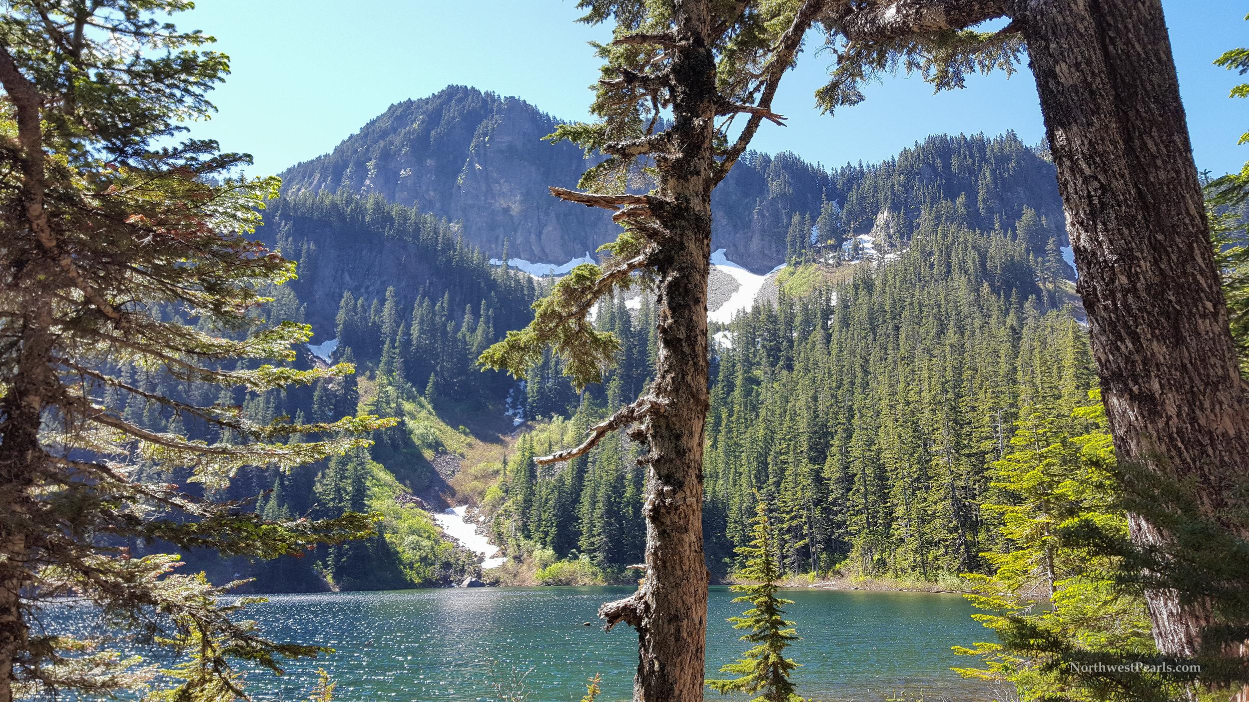 Northwest Pearls: Annette Lake