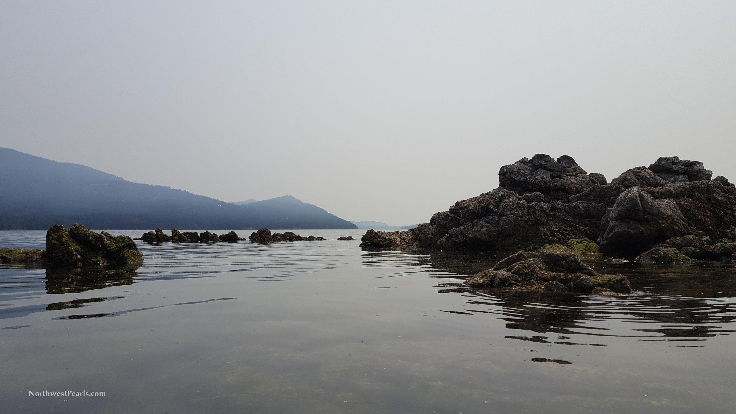 Orcas Island-8.jpg