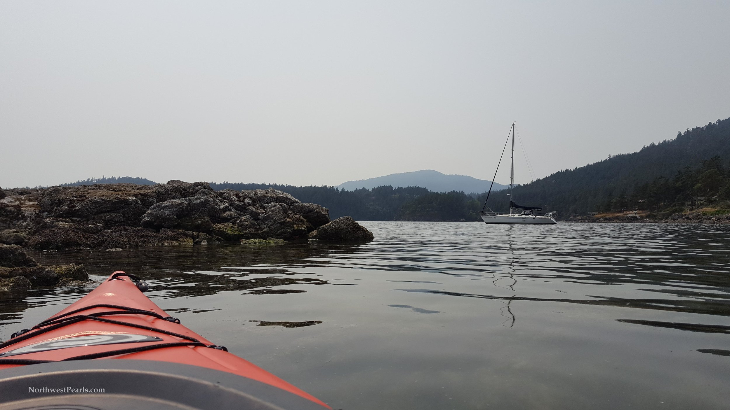 Northwest Pearls    Orcas Island    Blog