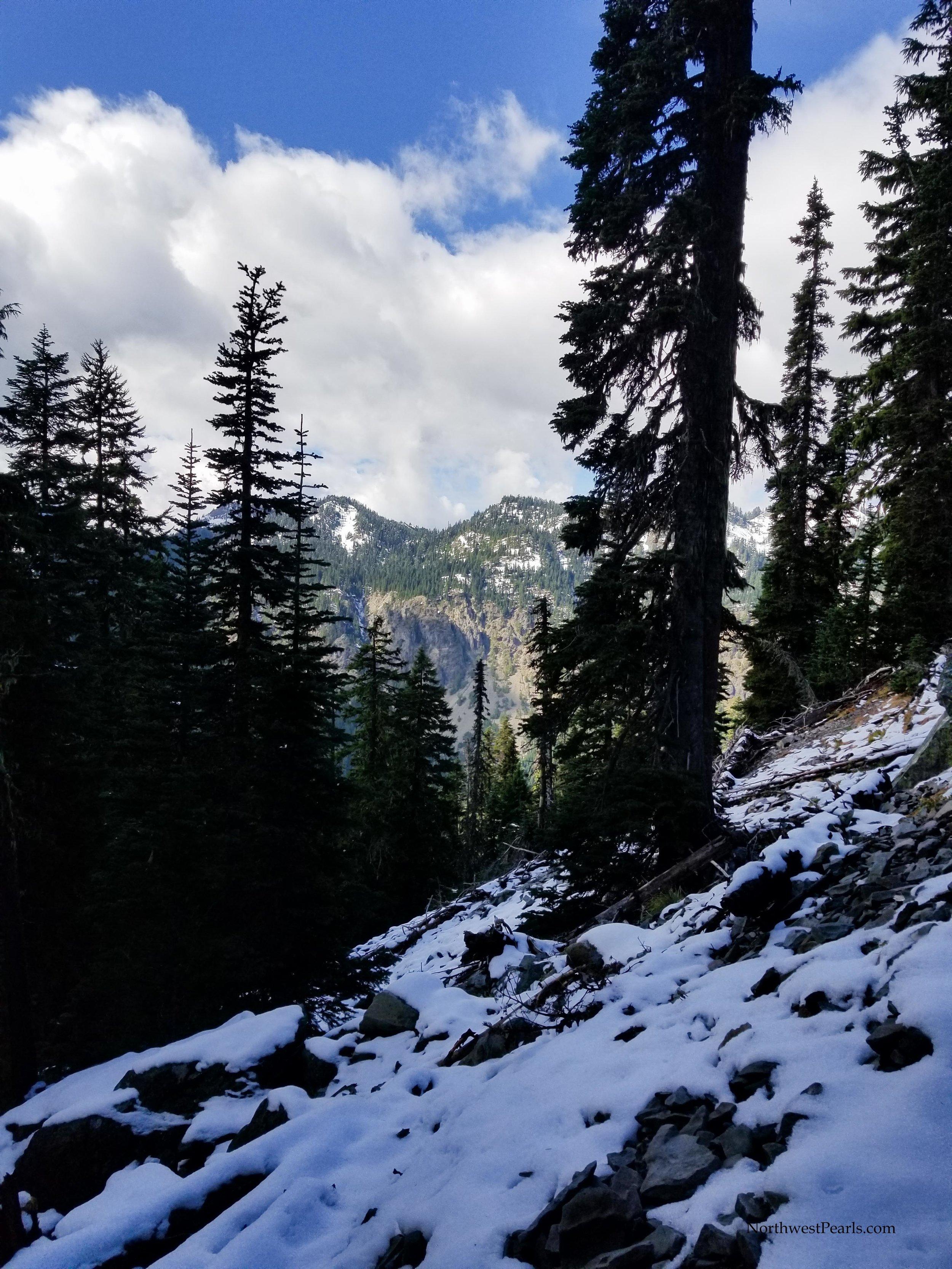 Snowgrass Flats-3.jpg