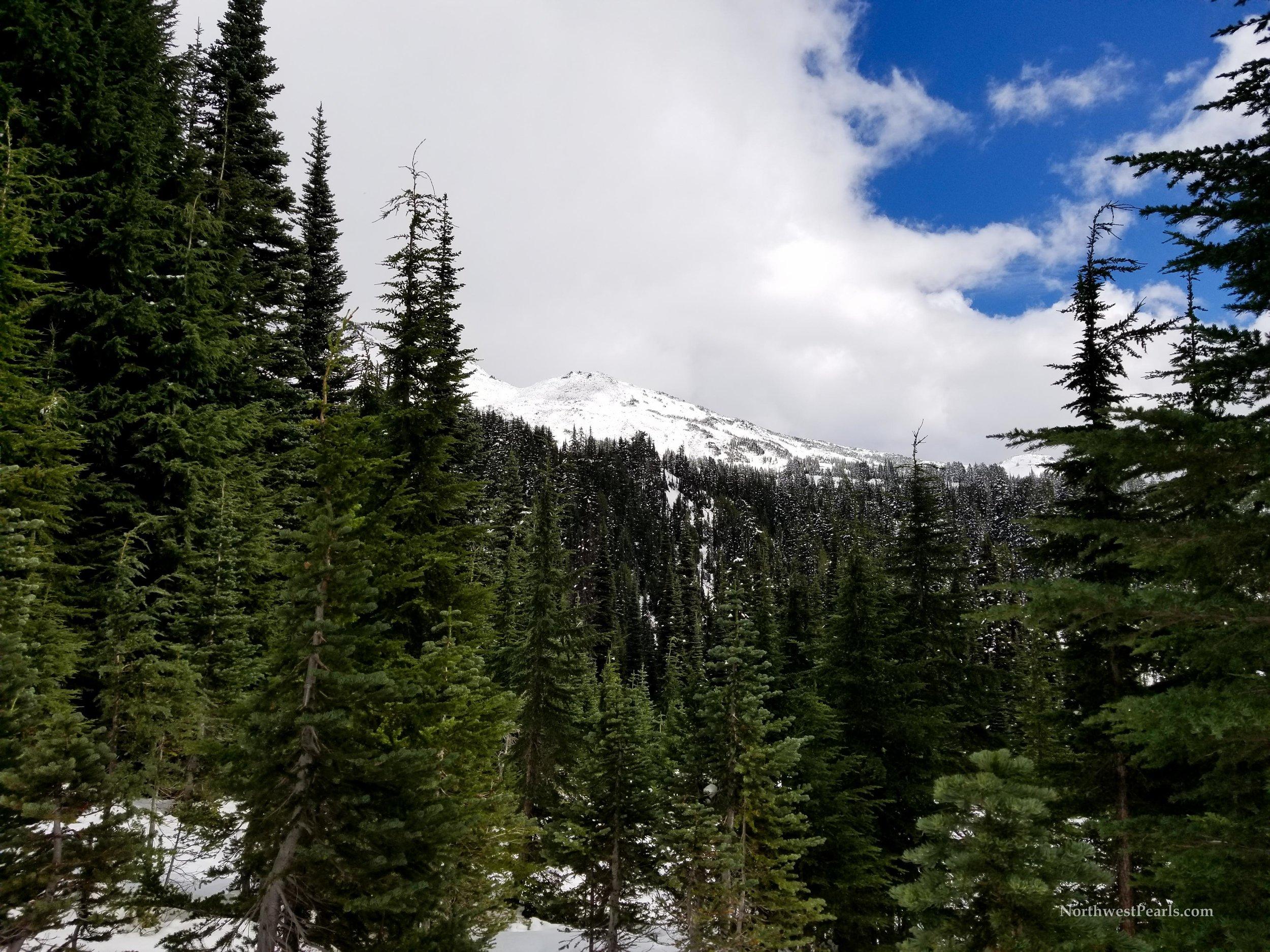 Snowgrass Flats-9.jpg