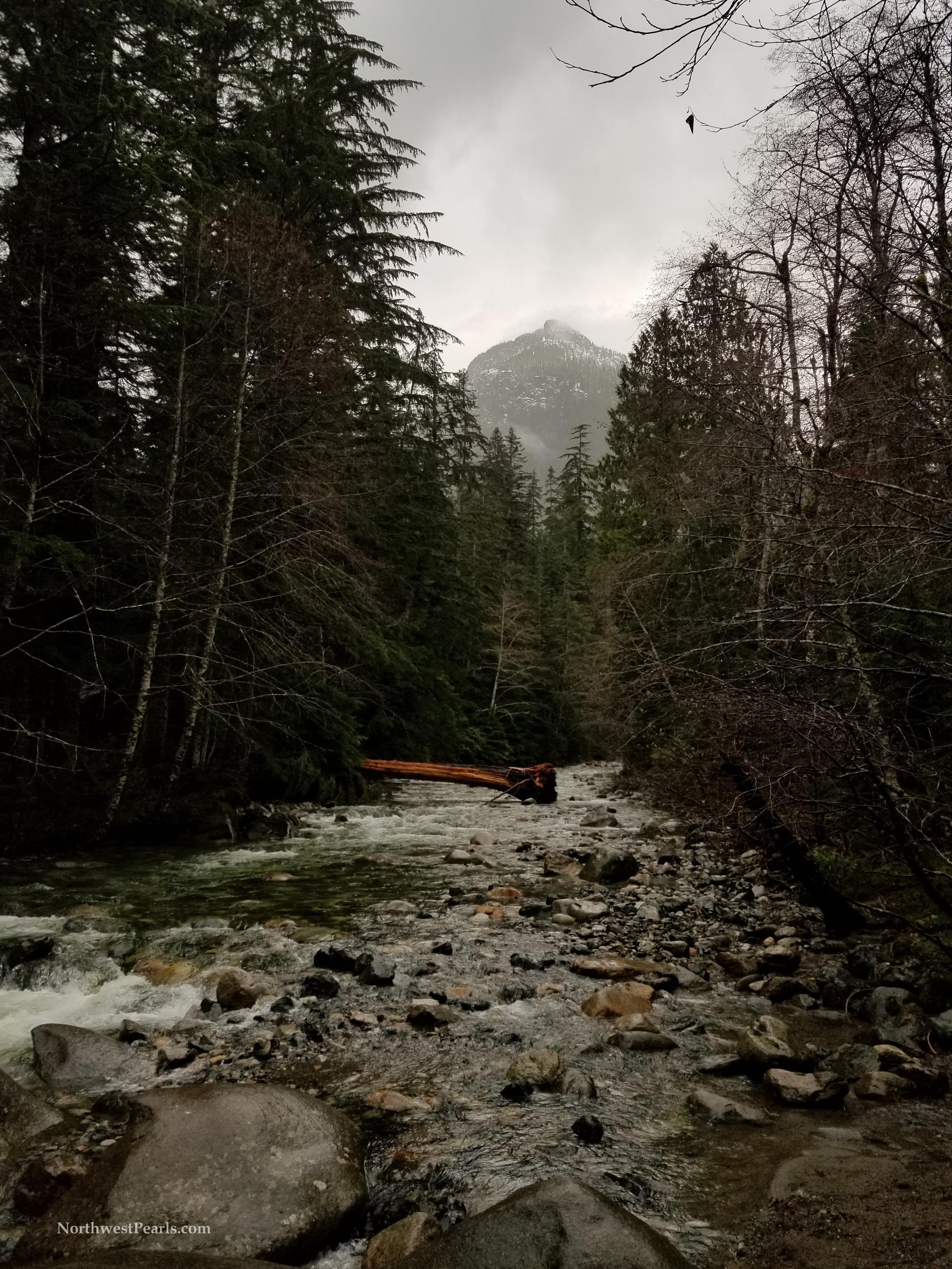Franklin Falls Solo Hike-1.jpg