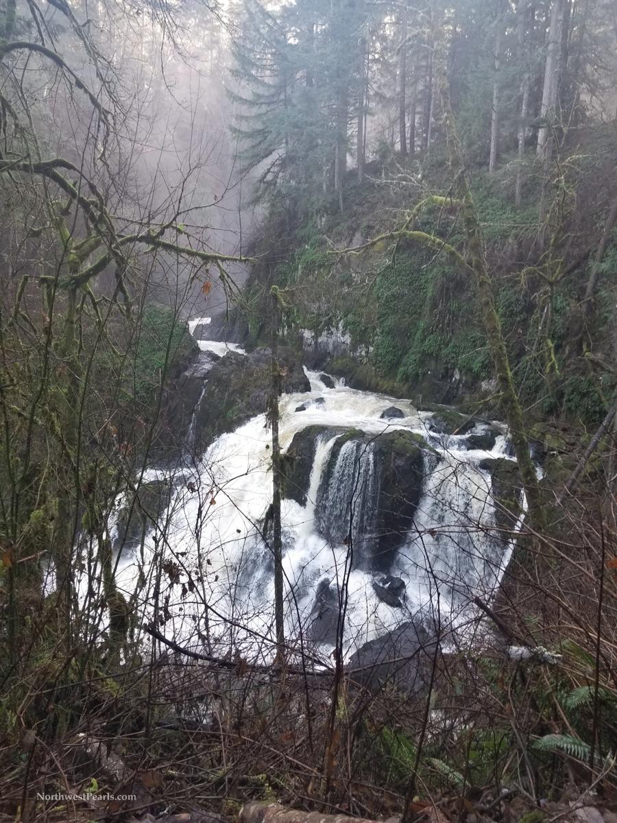 Little Mashel Falls-121204.jpg