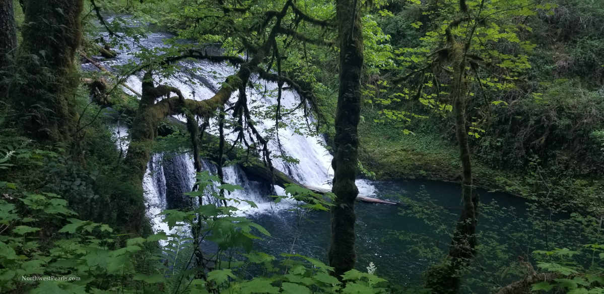 Silver Falls-6.jpg
