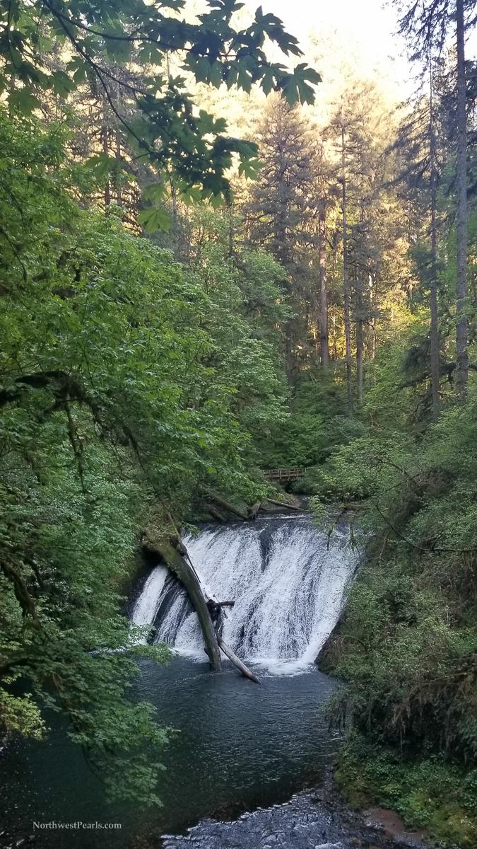 Silver Falls-7.jpg