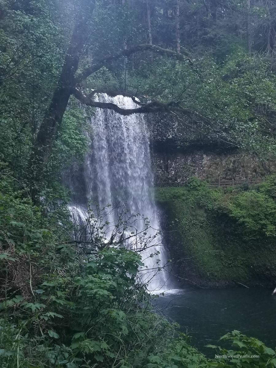 Silver Falls-8.jpg