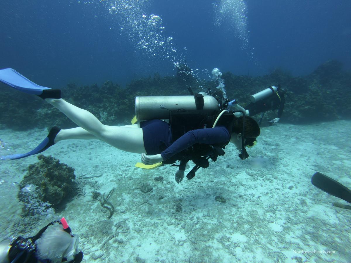 Caribbean Adventure-14.jpg