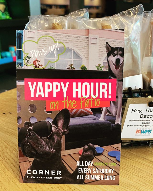 "Every Saturday is Yappy Hour at @cornerlou ! 50% of proceeds from their ""Hair of the Dog"" specialty cocktail goes to @thearrowfund ! Party for a good cause all summer long! 🐾🐶 . . . . #doghillpawps #dogtreats #dogpopsicle #popsiclesfordogs #frozentreats #popsicle #louisvilledogs #dogsofinstagram #dogsoflouisville #corner #aloftlouisville #aloftlouisvilledowntown #yappyhour"