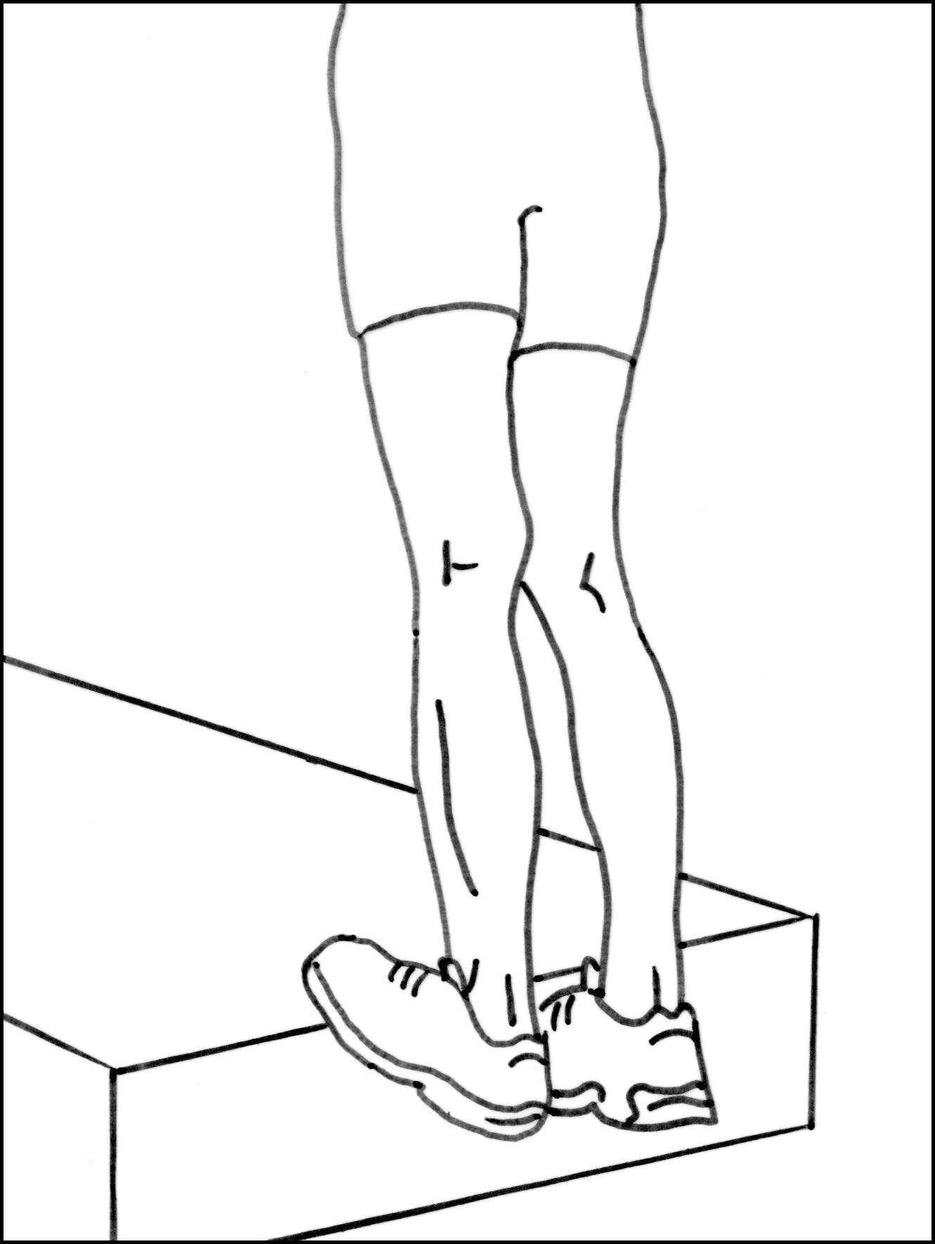 Fig 3.