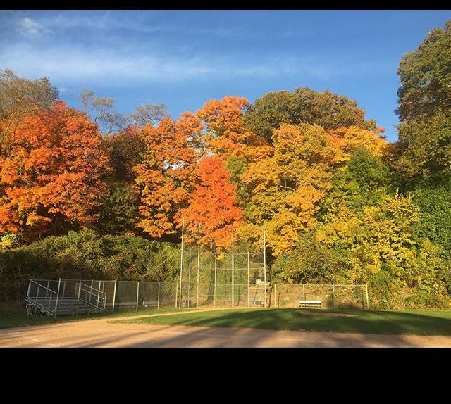 Pemberwick Park