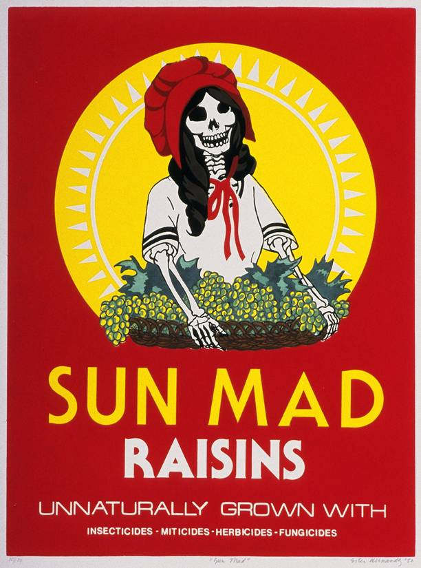 Ester Hernandez,  Sun Mad , 1981