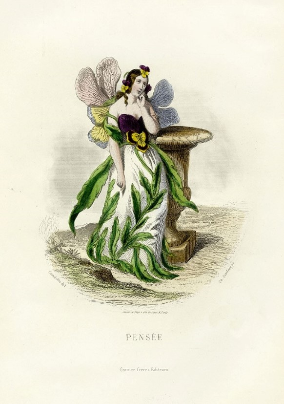 Grandville, The Flower's Personified, 1844. Pansy – Thought.