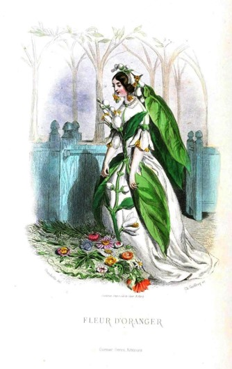 Grandville, The Flower's Personified, 1844. Orange Blossom – Chastity.
